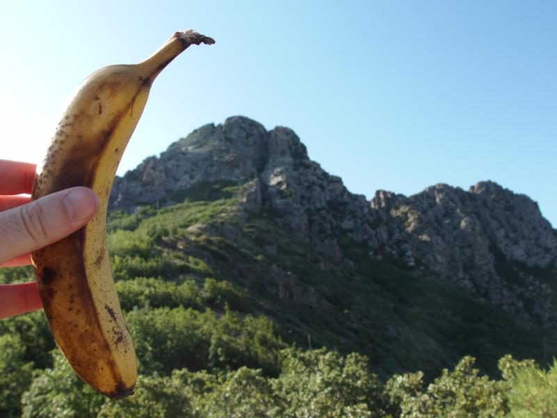 Using a banana for scale on Browns Peak