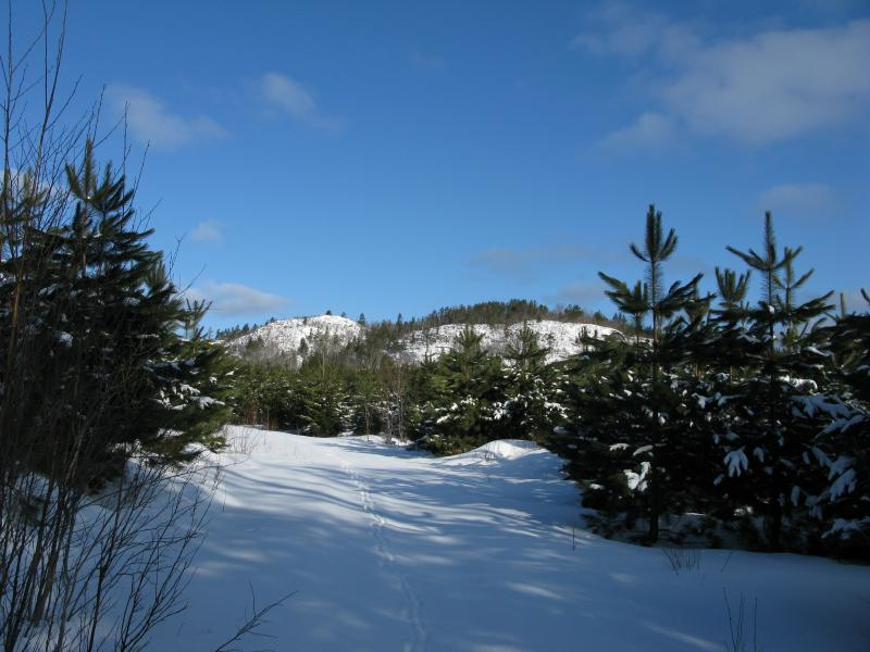 First view of Bald Mountain