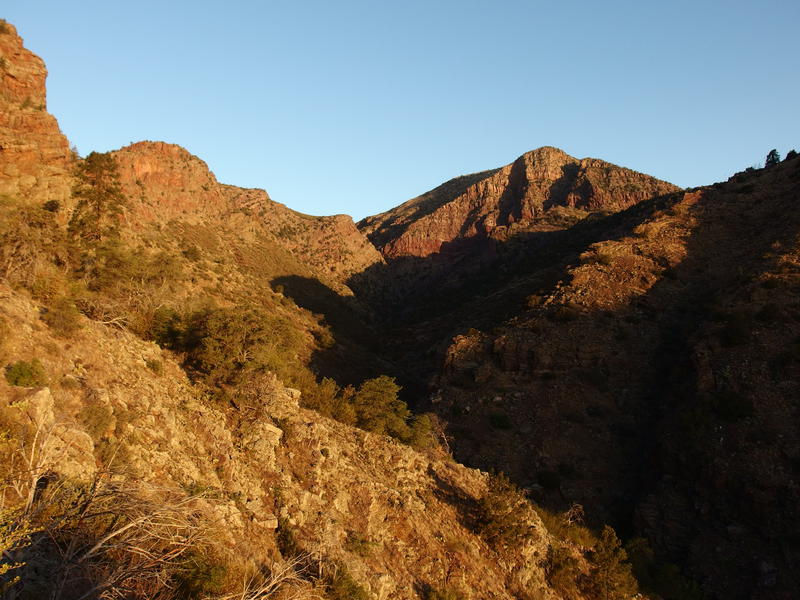 Early morning light on Barnhardt Canyon