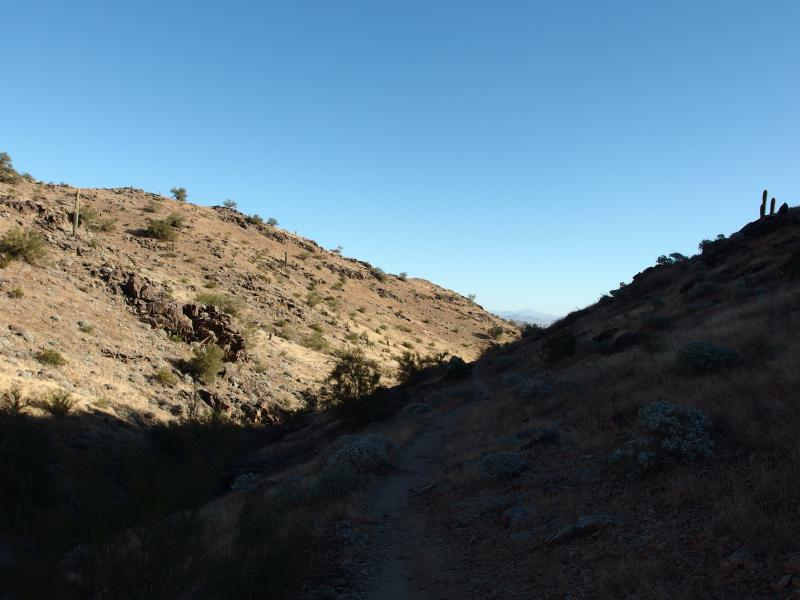 Within the shaded Javelina canyon