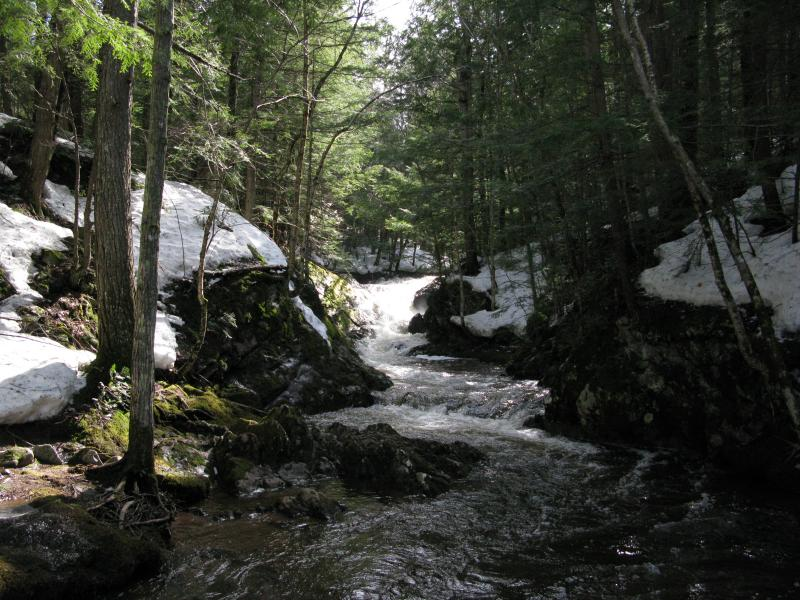 An inaccessible chute on Big Pup Creek