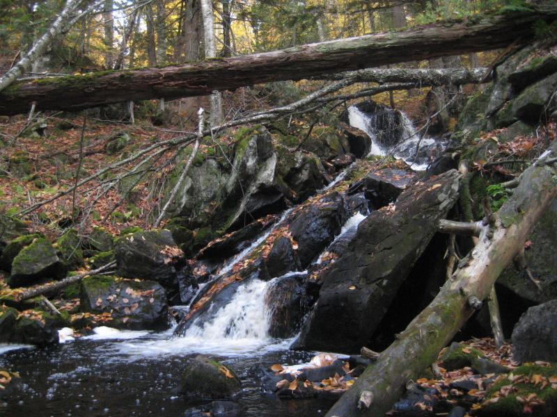Bulldog Falls in the McCormick Tract
