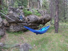 Perfect hammock site at Barbershop Springs