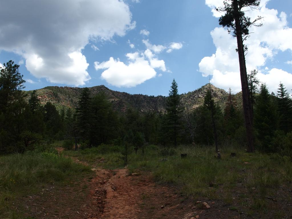 Blog | Cabin Loop: Up the Mogollon Rim