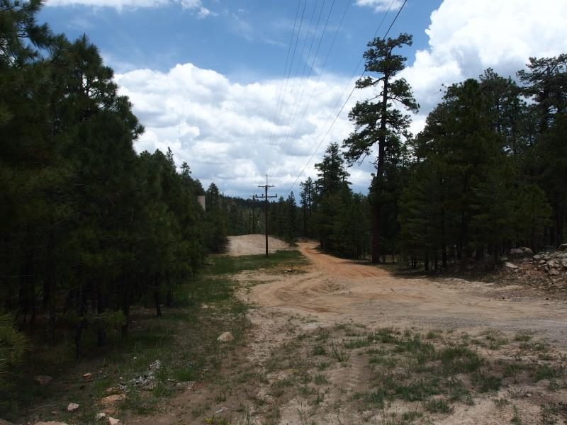 The wide dirt road to General Springs