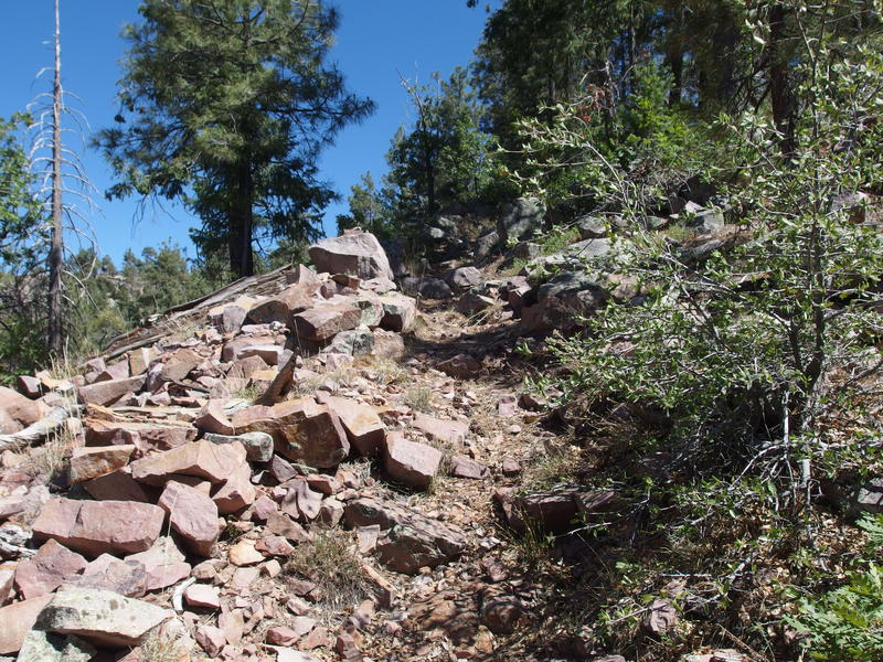 Steep going on Center Mountain Trail