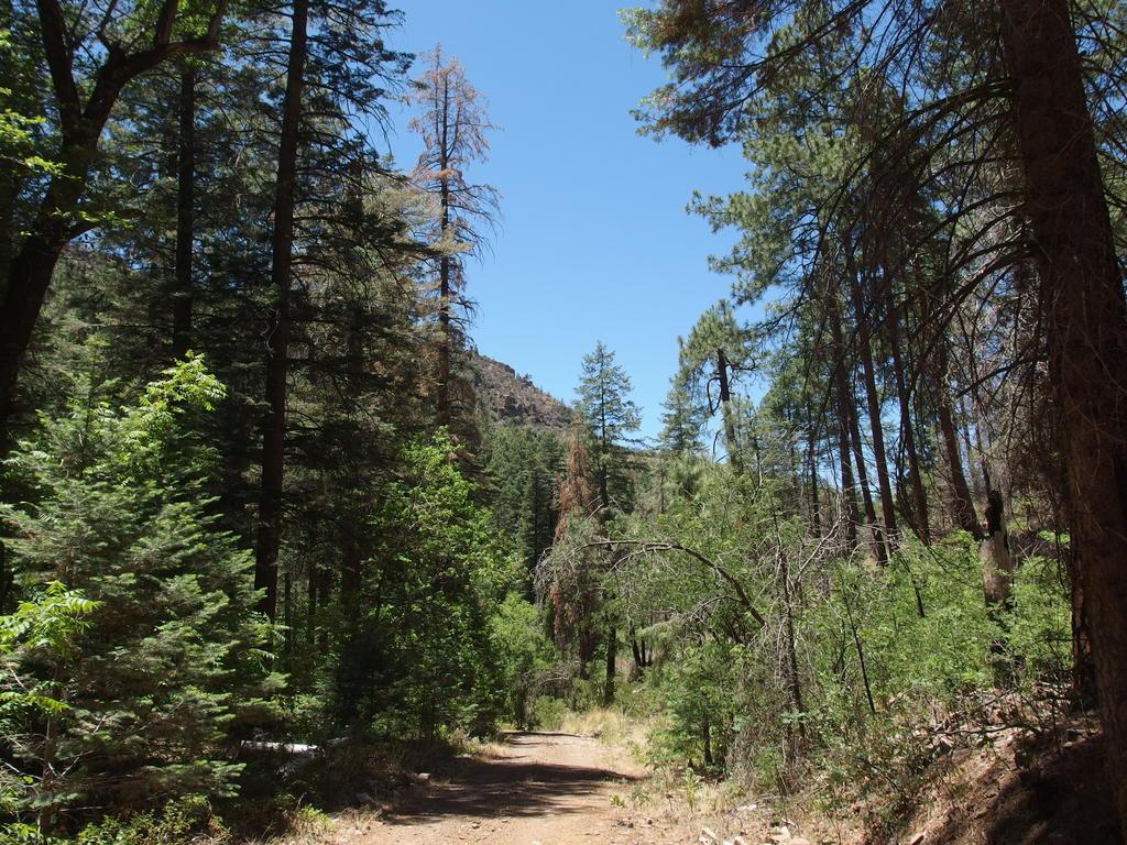 Blog | Center Mountain to Pueblo Canyon Overlook