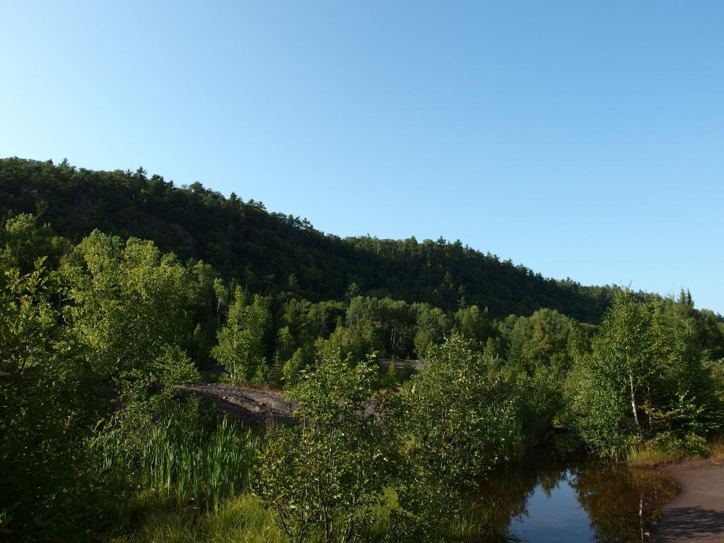 Blog | A Brief Visit to Cliff Ridge