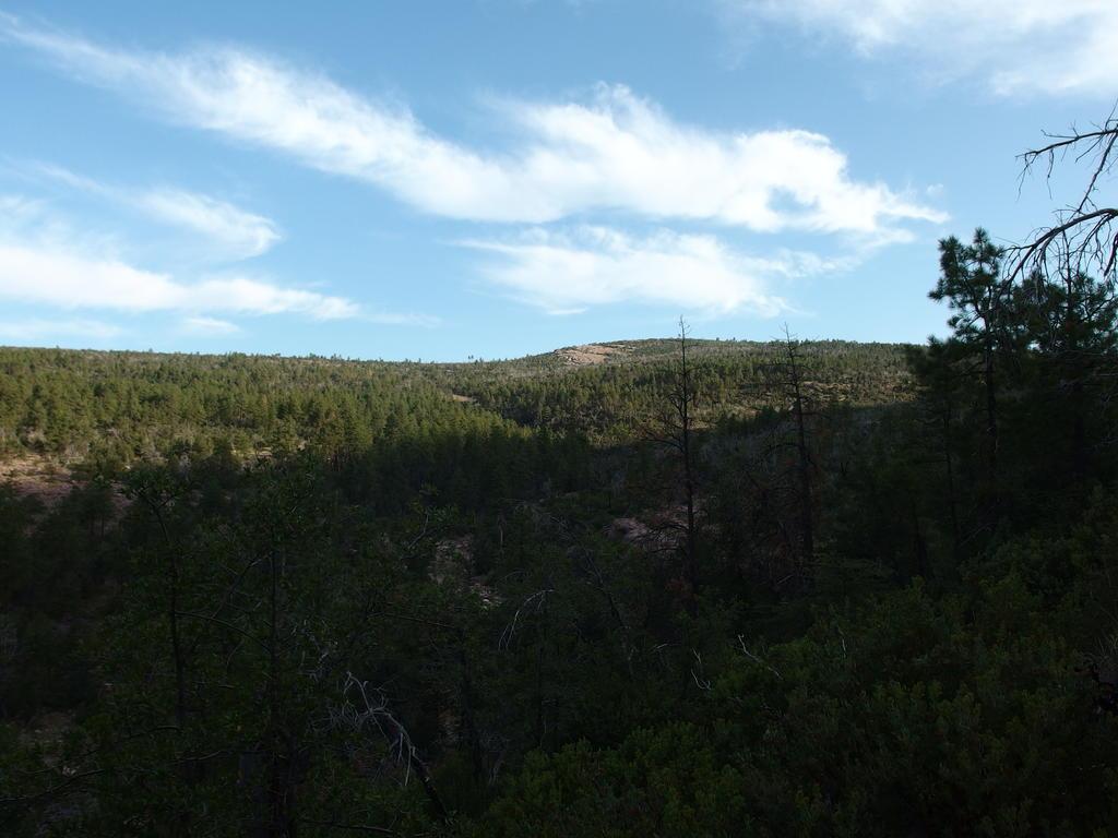 Blog | Across the Mazatzals: Willow Springs Bushwhack