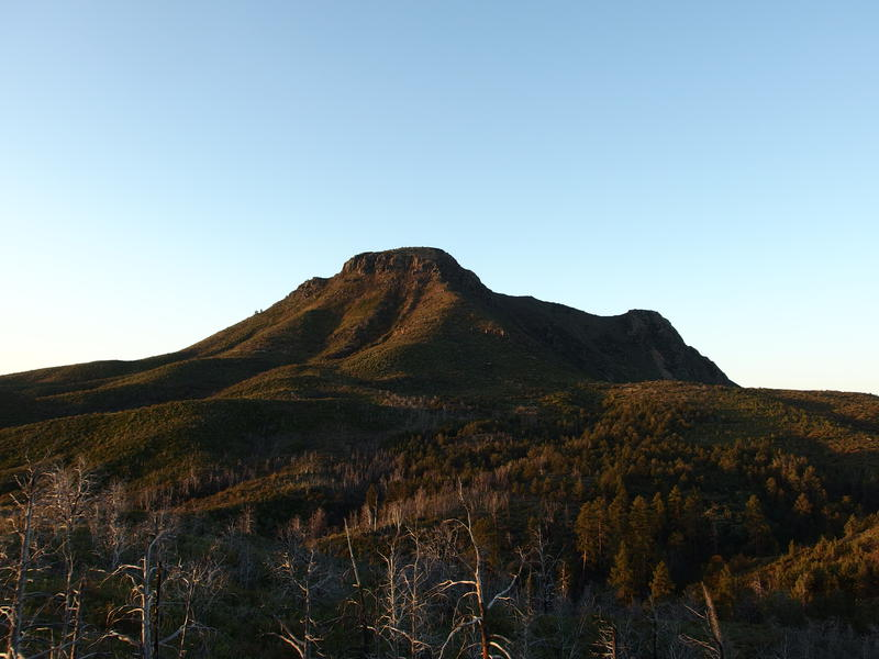 Morning light on Saddle Mountain