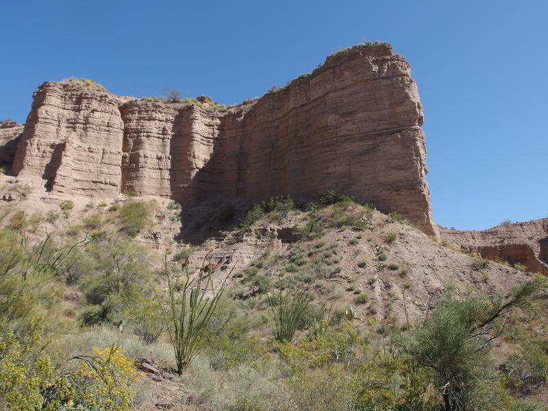 Towering chalk formations above the wash
