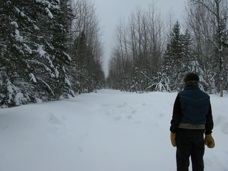 Courtney Lake Snowshoeing   Jacob Emerick's Blog