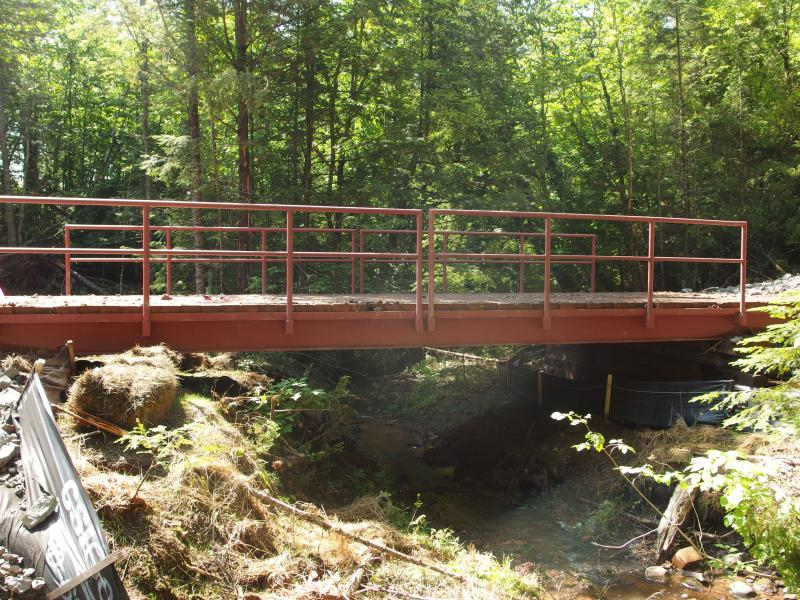 A temp bridge over Cushman Creek
