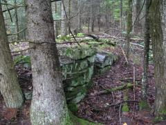 Old foundation from the abandoned bridg