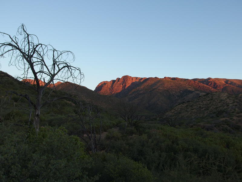 First light on the rugged Mazatzal mountains