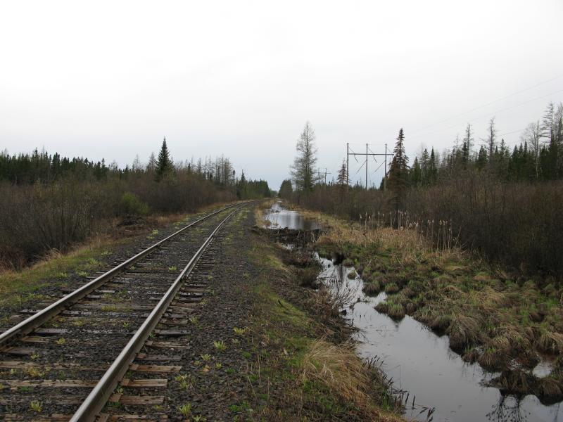 Running water and beaver dams near the tracks