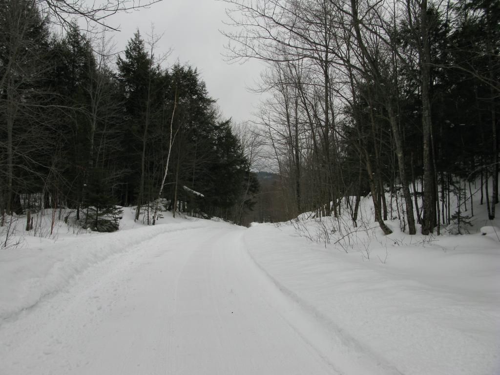 Blog | A Snowy Hike along Erick's Road