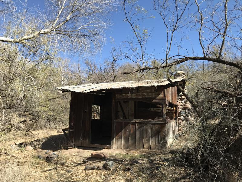 Old cabin at Fig Spring