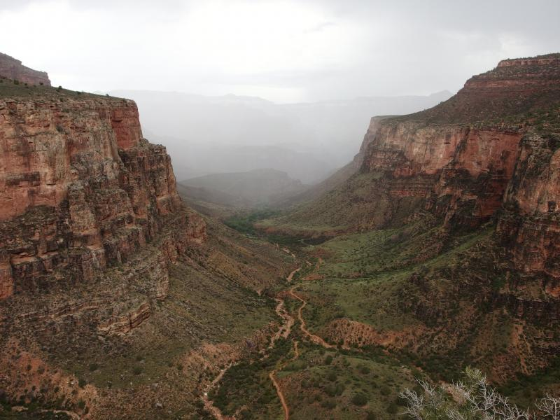 Misty rain deeper in the canyon