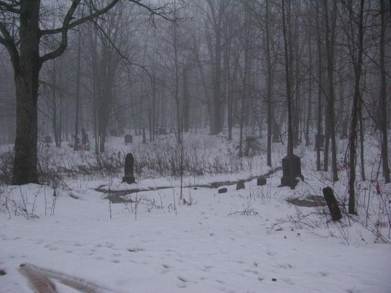 Headstones leading into the fog and woods