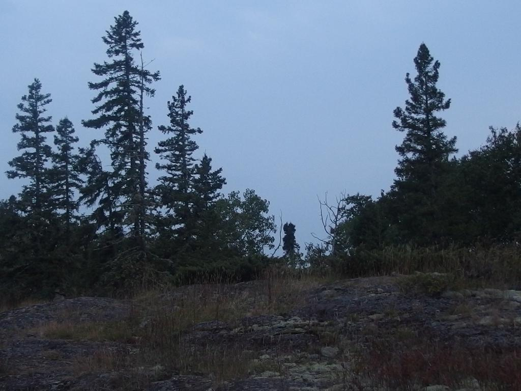 Blog | Isle Royale, Day 4: Magnificence of the Minong