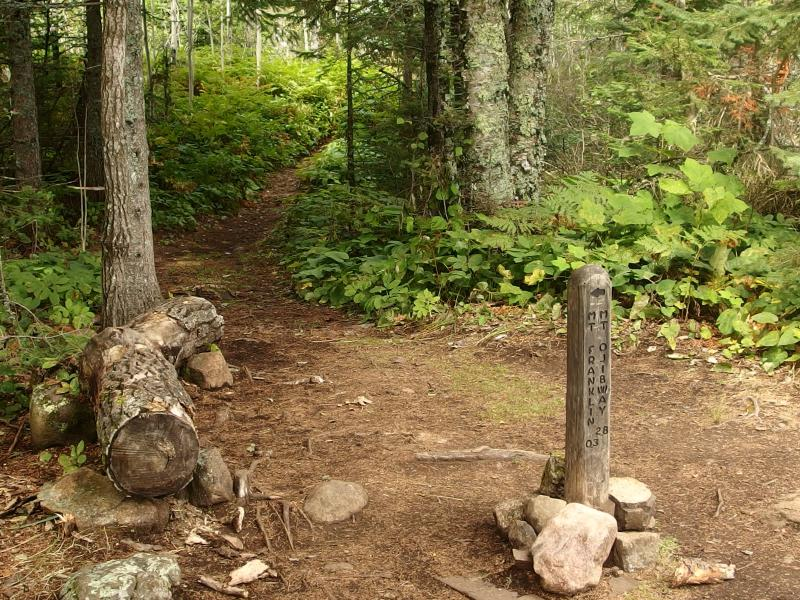 Trail junction on the Greenstone