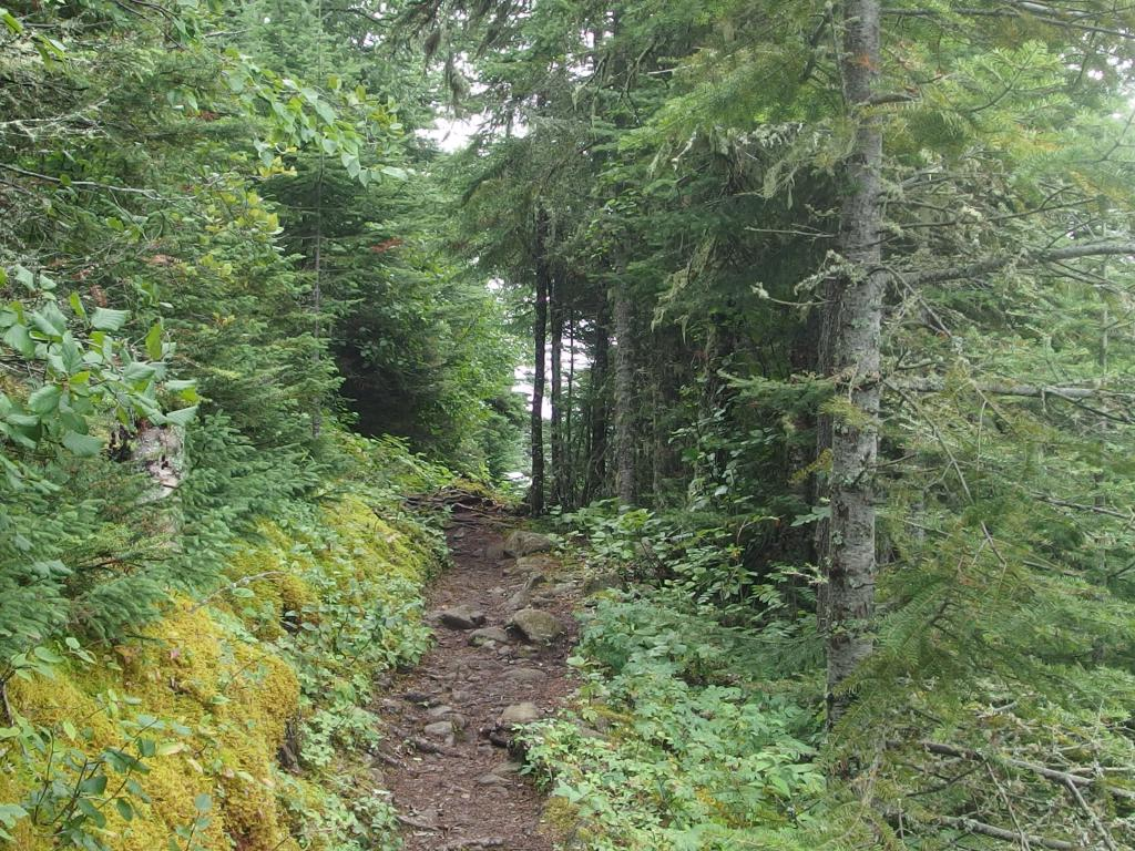 Blog | Some Isle Royale Hiking Routes