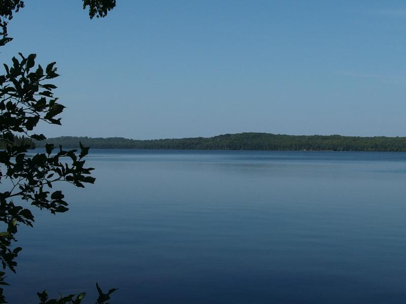 Calm waters on the southern shore of Lake Desor