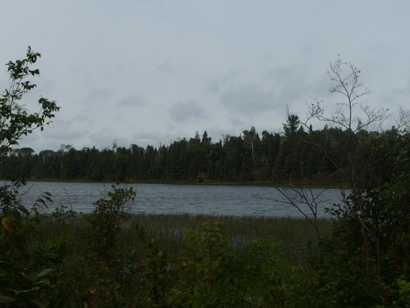 Along the shore of Chickenbone Lake