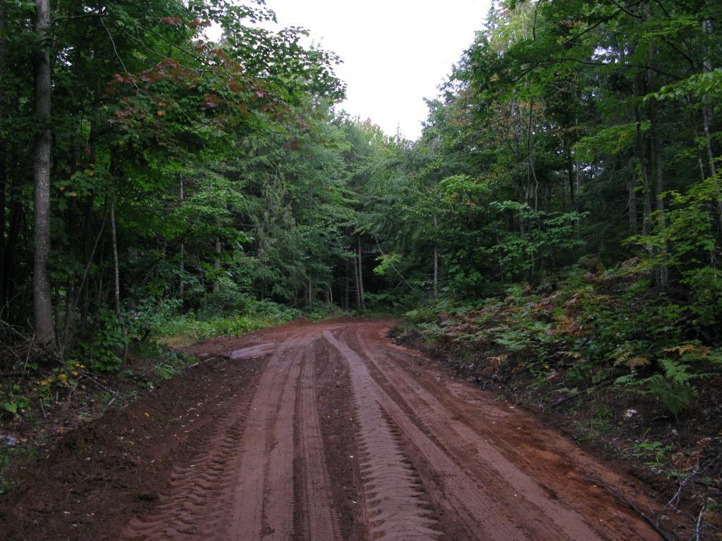 Blog | Ascending Ives Hill