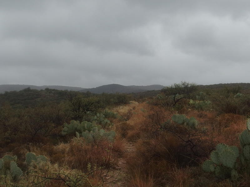 Dark, cloudy skies over the JF Trail