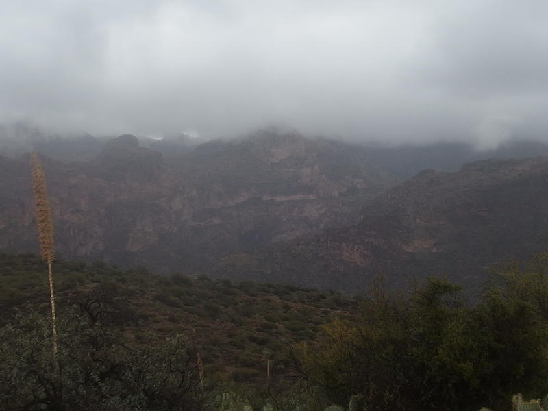 A deep and misty Fish Creek Canyon