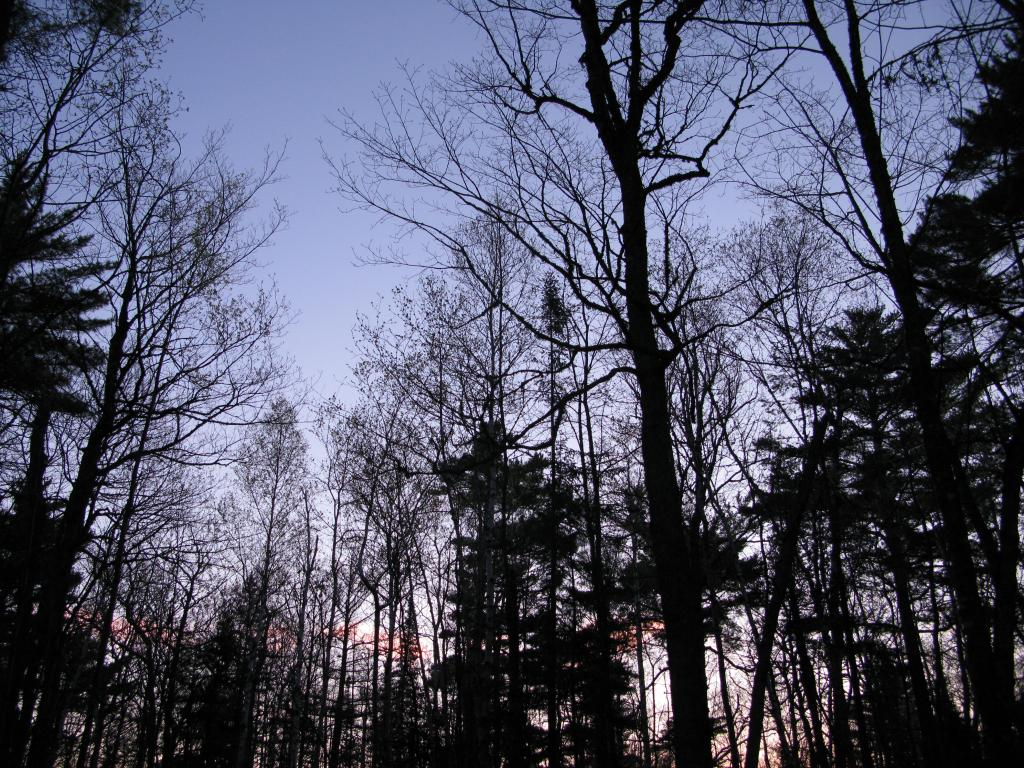 Blog | Keweenaw Hike - The North Shore