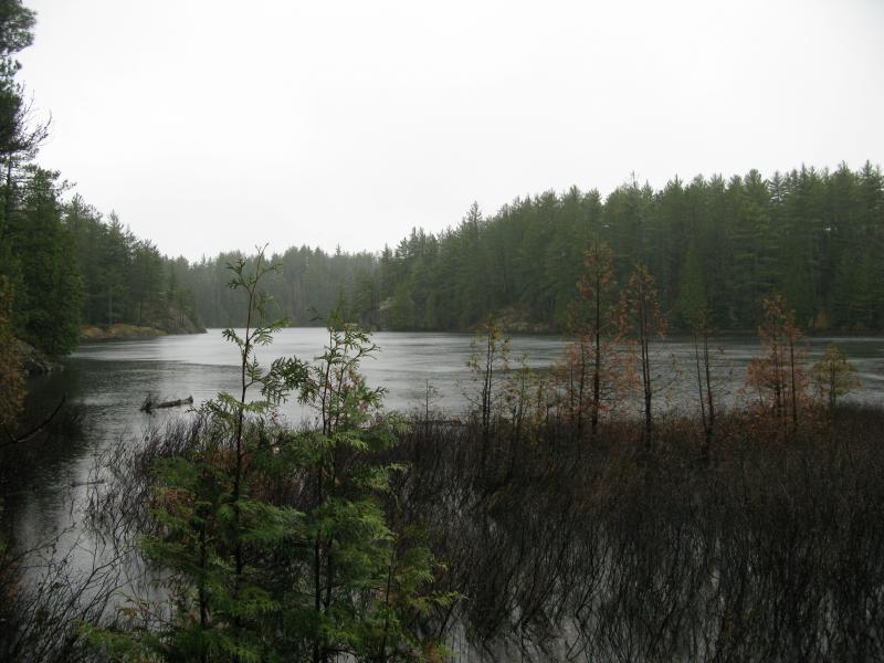 Looking south on Lake 8