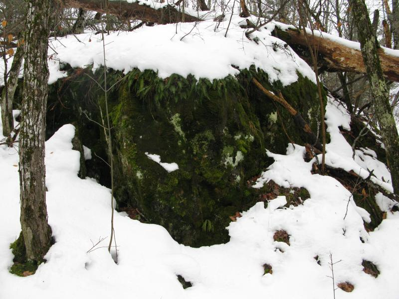 Large, mossy boulder at the peak
