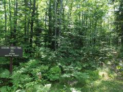 Trailhead for the Gogebic Ridge
