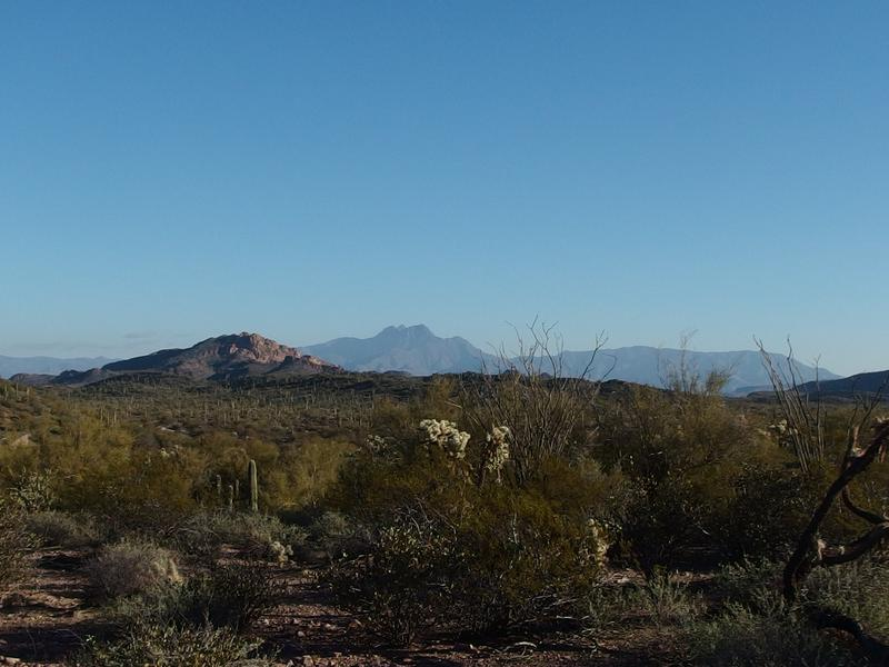 Four Peaks and Little Four Peaks in the distance