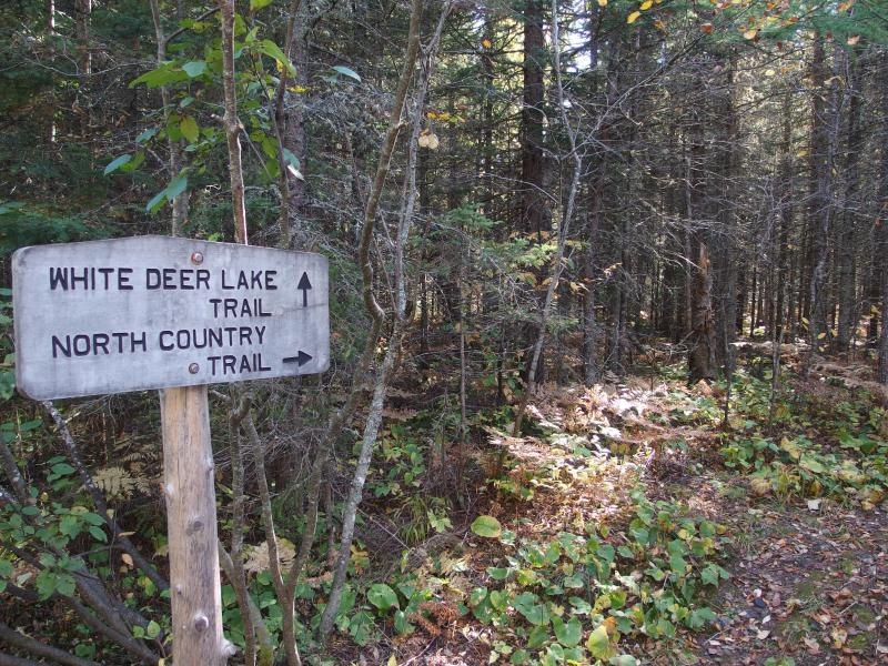 Sign for the North Country Trail split