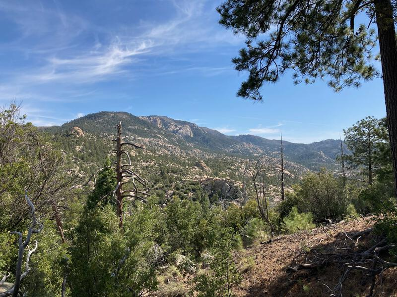 Top of Mount Lemmon in view