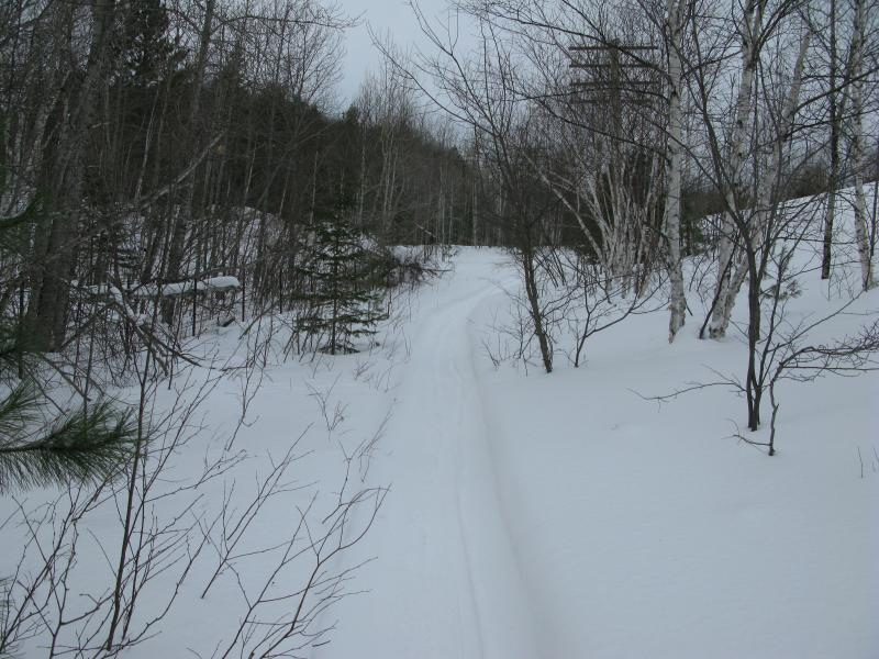 The well-groomed trail