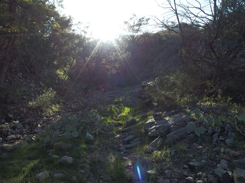 A dreamy, easy climb out of Coon Creek