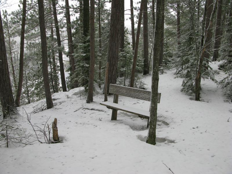 Bench near the steep climb