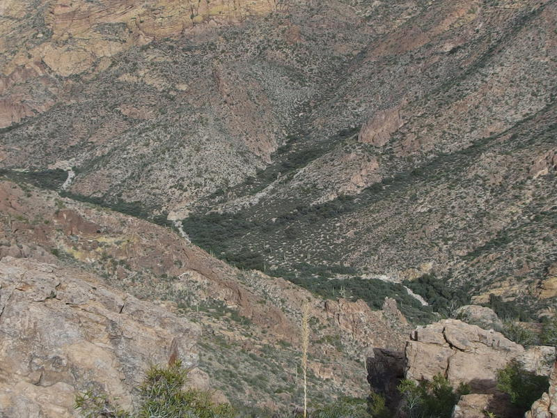Distant view of the winding wash in Peter's Canyon