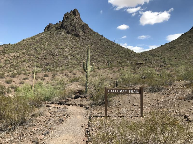 Start of the Calloway Trail