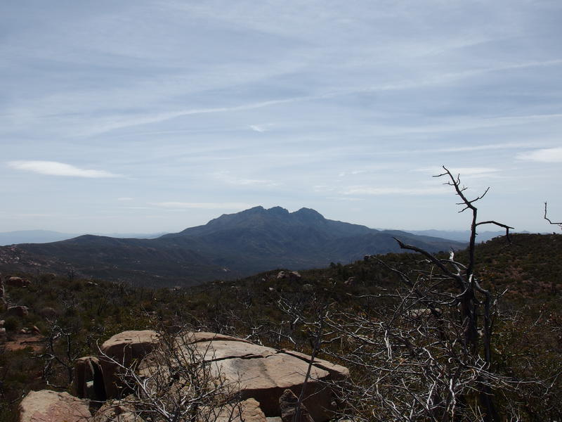 South at the Four Peaks