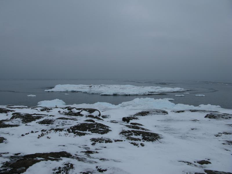 Ice and rocks and cold grey waters