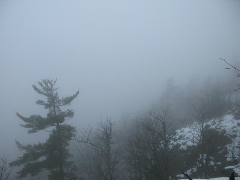 Dense fog blocking all hopes of a view