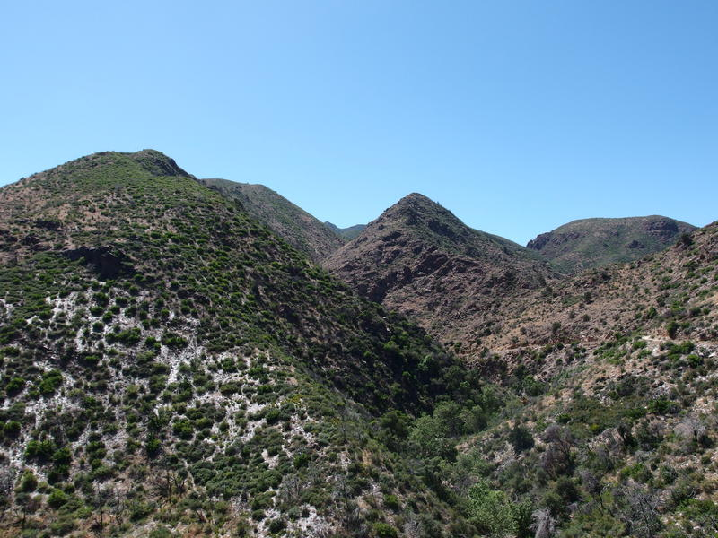 Climbing up from Sycamore Creek