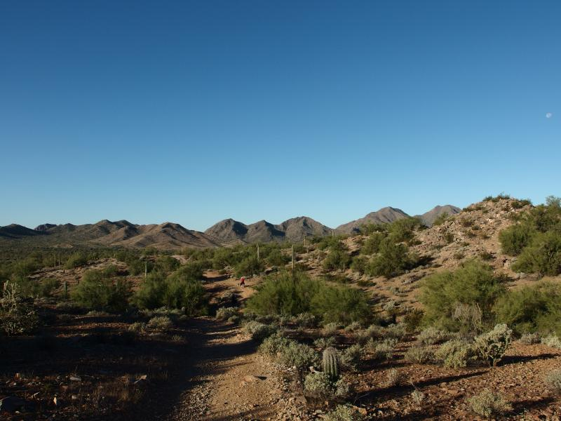 Hard-packed desert trail