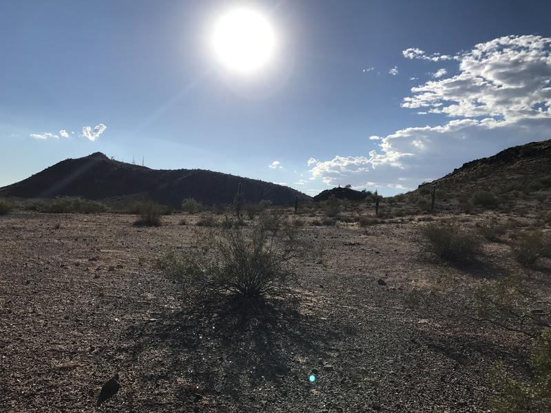 Hot desert landscape in northern Phoenix
